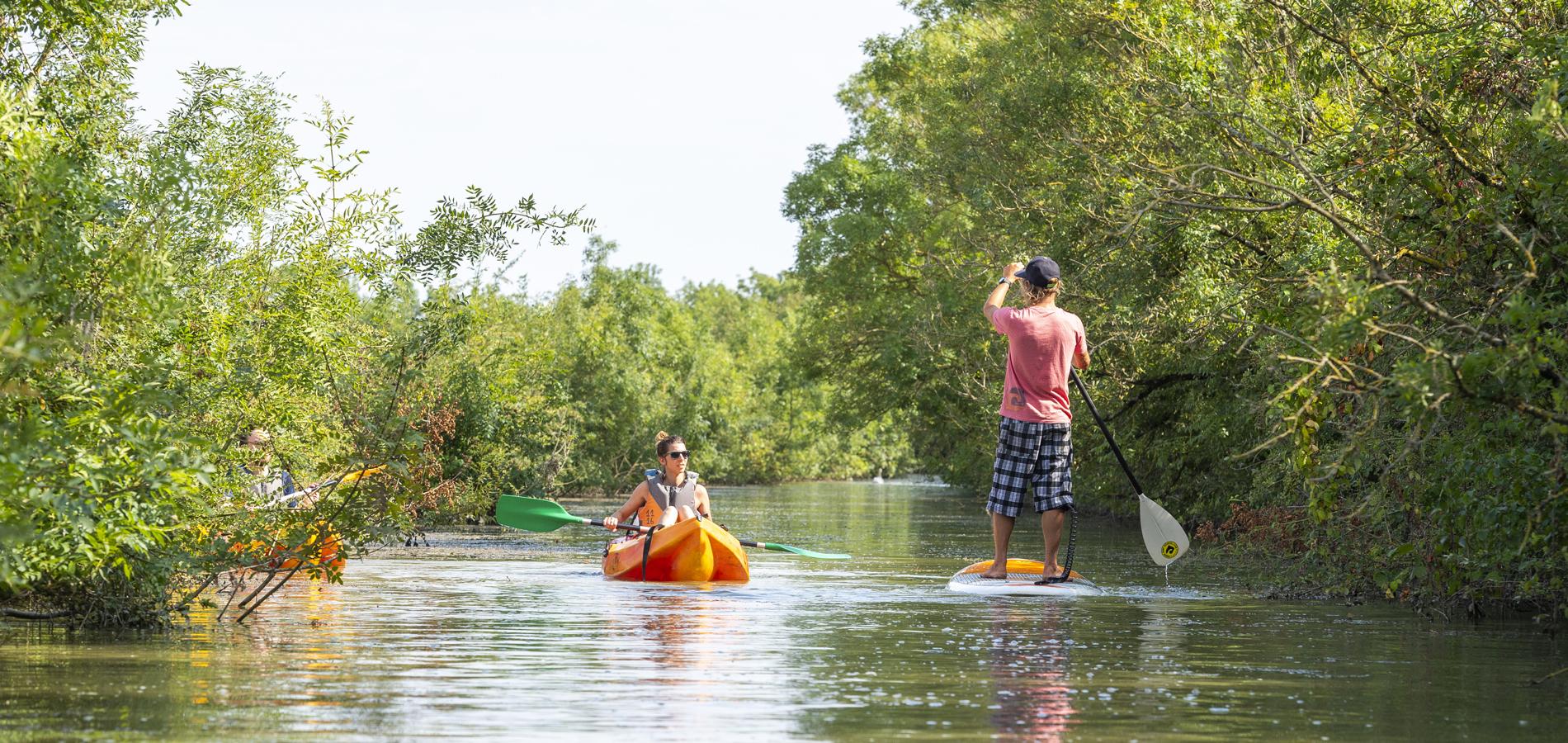 Paddle Canoë